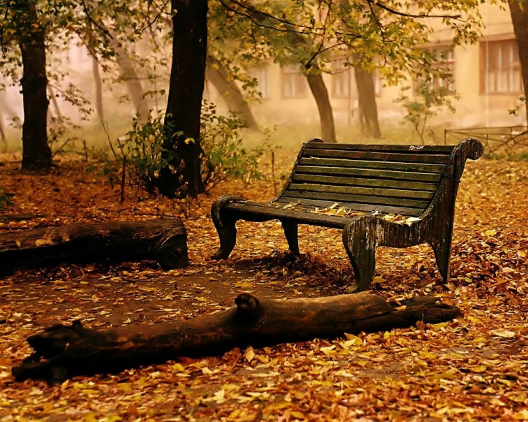 https://huyenthoaime.files.wordpress.com/2012/09/autumn-wallpaper-autumn-9444937-1280-1024.jpg?w=300